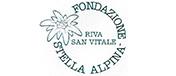 Casa Vacanze  stella alpina Camperio Ticino Logo
